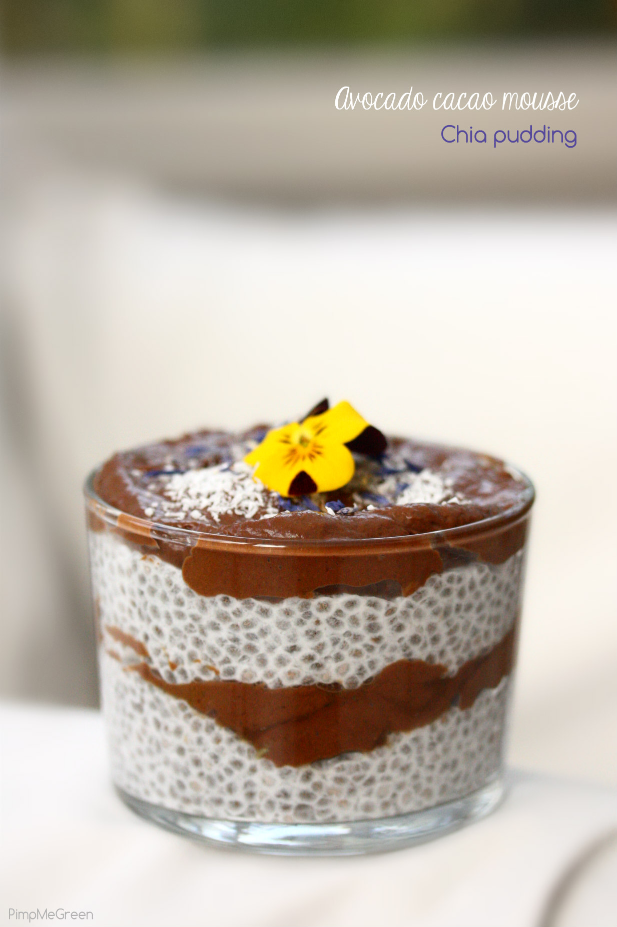 chocomole chia pudding