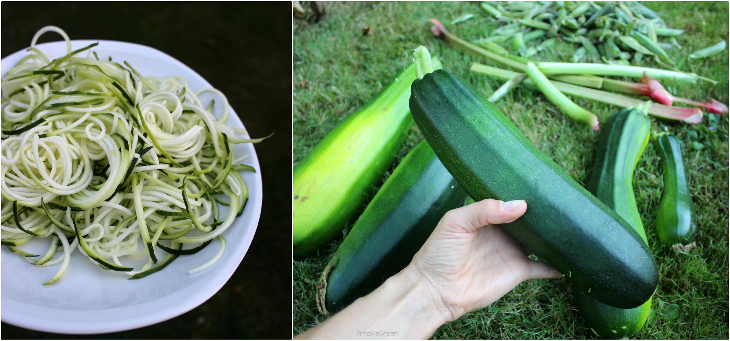 Zucchini Collage pmg